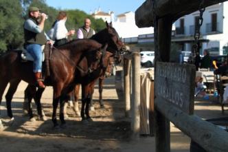 'Paardentoog' in El Rocío. Velen gaan hier te paard op bedevaart... en op café!